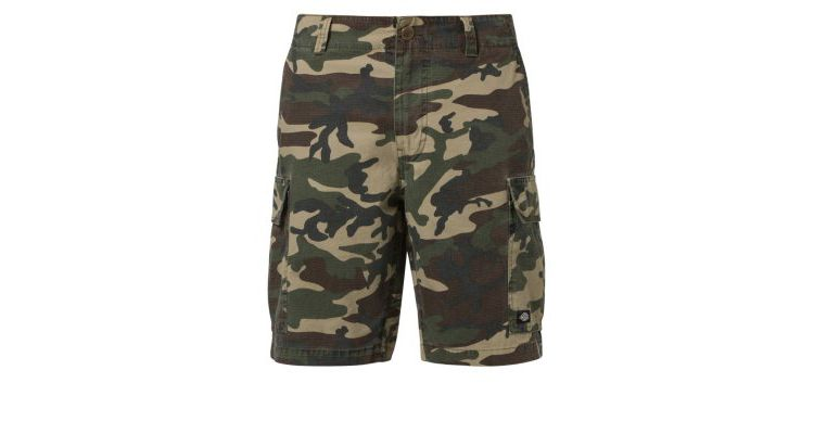 PRODUCT_IMAGE Dickies NEW YORK Shorts camouflage