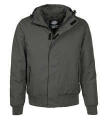 Dickies CORNWELL Winterjas charcoal grey