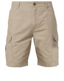 Dickies NEW YORK Shorts khaki
